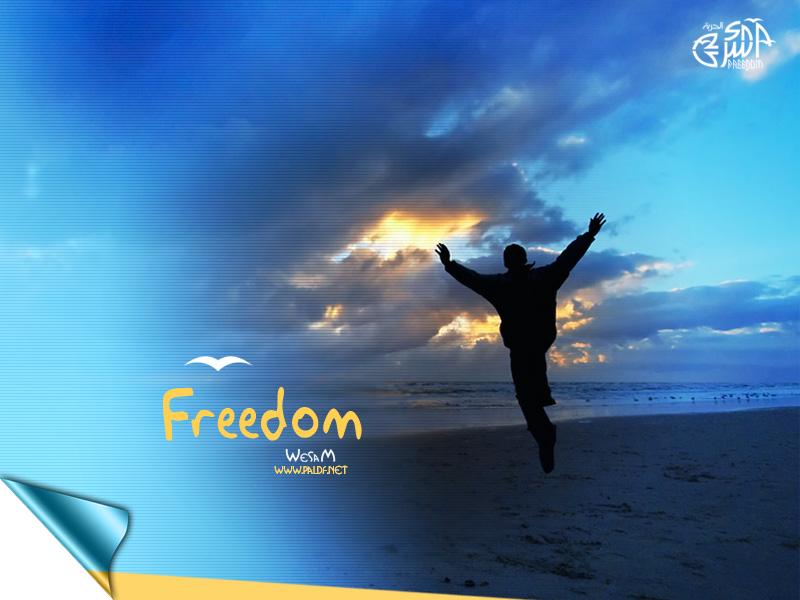 عام الحرية 12/2011